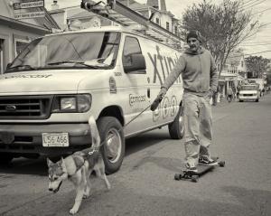 Board Dog
